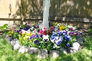 """Mixed Pansy Tree Ring Mat - Grow Pansies Tree Border Garden Flowers. Includes: (1) Pre-seeded 17"""" x 5' Flower Seed Mat. Simply Roll out, plant and grow. Instant garden mat for flowering bushes."""