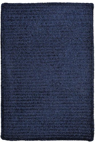 Allusion Area Area Rug, 2'x4', NAVY