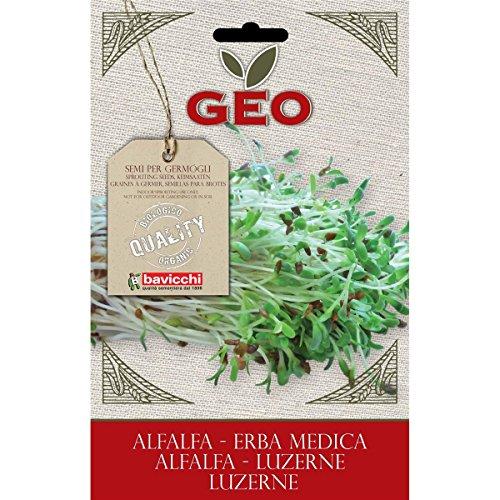 geo-zer0203-erba-medica-semi-da-germoglio-marrone
