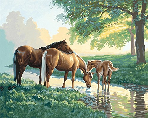 Dimensions Needlecrafts PaintWorks Paint By Number Kit, Horses by a Stream