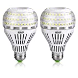 SANSI A21 22W (250-200Watt Equivalent) Omni-Directional Ceramic LED Light Bulbs–3000 lumens, 5000K Daylight, CRI 80+, E26 Medium Screw Base Home Lighting (2Pack) (Color: 5000k Daylight)