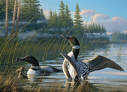 Common Loons, A 1000 Piece Jigsaw Puzzle By Cobble Hill