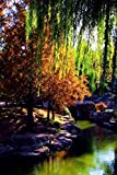 Zhongshan Park and Tianan Square in Deep Autumn (Scenery Photo Book)