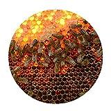 [FOR U DESIGNS]個性的な柄 円形 マット 滑り止め付き 保護マット mat 直径約60cm 可愛い蜂柄1