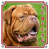 Hundewarnschild - Bordeauxdogge, Molosser - ACHTUNG! , 20 x 20 cm