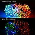 easyDecor Flower Solar String Lights