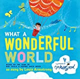 img - for What a Wonderful World book / textbook / text book