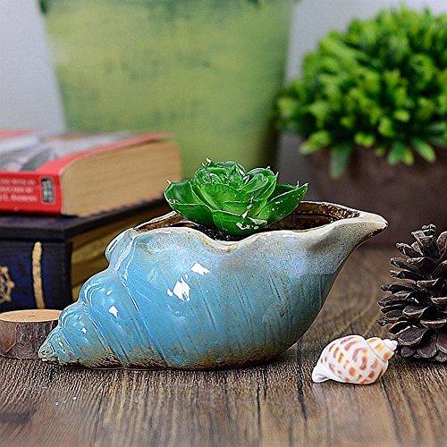 YOURNELO Creative Bule Conch Ceramic Small Flower Plant Pots Succulent Planters Vase