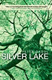 img - for Silver Lake book / textbook / text book