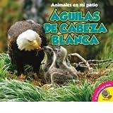 Aguilas de Cabeza Blanca = Bald Eagle (Animales En Mi Patio)