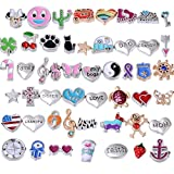 Floating Charms for Glass Living Memory Lockets DIY Wholesale Lot Mix 50 Pcs