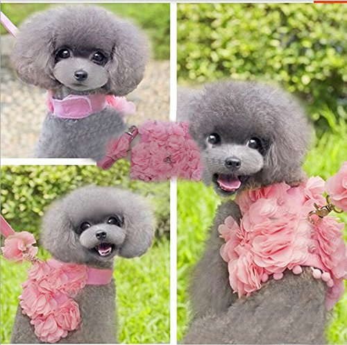 Bro'Bear Princess Floral Velcro Cat & Dog Safety Walking Vest Harness + Matching Lead Leash with Crown Charm (Can Be Pet & Kitty & Puppy Flower Halloween Classics Collection Costume/Photo Apparel/ Holiday Wear/Clothes Party Coat/Wedding Dress) (Pink, Medi