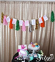 TRLYC Sequin Ture champagne Fabric Photography Backdrop, Select you size, Sparkly Ture champagne Sequin Curtain, Best Wedding/Home/Party Fashion Decoration