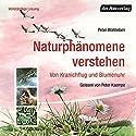 Naturphänomene verstehen: Von Kranichflug und Blumenuhr Hörbuch von Peter Wohlleben Gesprochen von: Peter Kaempfe