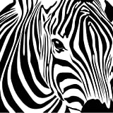 Zebra - 30