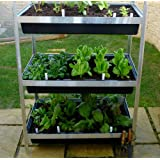 Planter, Raised Bed Vertical Garden Planter - Grow Your Own - Three Levelsby Two Wests & Elliott