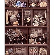 Wallpaper Designer Library Bookshelves Goods Shelves Wall Mural Wall Paper, Red/Purple/Gray/Yellow