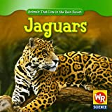Jaguars (Animals That Live in the Rain Forest)