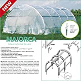 Betty Garden Struttura NEW per Serra Professionale Maiorca da 4 mt - Serre da Giardino