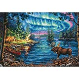 Dimensions Gold Collection Counted Cross Stitch Kit, Northern Night, 16 Count Dove Grey Aida, 16'' x 11'' (Color: Multicolored, Tamaño: Large)