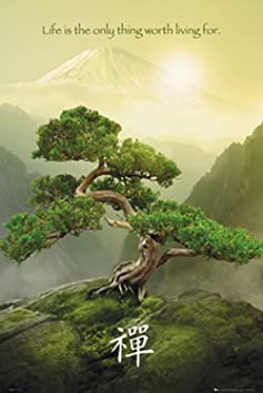 Nature Posters GB Eye Zen Mountain Poster