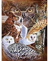11 Owls Super Soft Plush Queen Size Blanket by Gardner