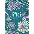 Holy Bible: New International Version (Bible Niv)