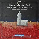 Bach: Motets BWV 225-230 & Anhang 159