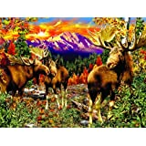 Mountain Glade 500pc Jigsaw Puzzle by Steven Michael Gardner