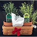 Festive Wicker Herb Basket with Live Rosemary and Christmas Thyme Plants