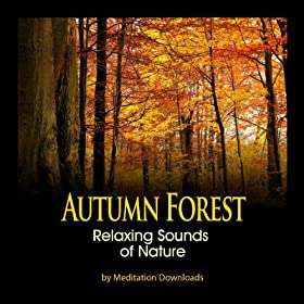 Nature Sounds - Autumn Forest Relaxing Sounds of Nature