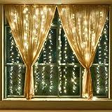Leapair Tenda Catena Luci Natalizie 300 LED (3m x 3m) 8 Modalità Con Controllo Funzione di Memoria Ideale per Decorazione Natale/Matrimoni/Feste (Bianco caldo)