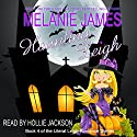 Haunting Leigh: Literal Leigh Romance Diaries, Book 4 Audiobook by Melanie James Narrated by Hollie Jackson