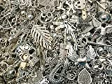 30pc Assorted Size Antiqued Silver Charms, Pendants, Beads, Spacers, Connectors and More Jewelry Finding Parts Jewelry Making Supplies (Exclusively From PepperLonely)