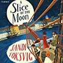A Slice of the Moon Audiobook by Sandi Toksvig Narrated by Lisa Dwan