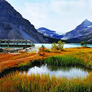 The Most Scenic Drives in America, ly Revised and Updated: 120 Spectacular Road Trips from Reader's Digest