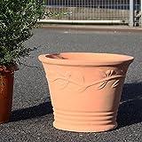 テラコッタ 鉢 大型 素焼き鉢 アンティーク 10号 販売 おしゃれ 植木鉢