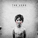 Vulnerable [Vinyl LP]