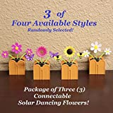 New Connectable Solar Dancing Flowers - Package of 3