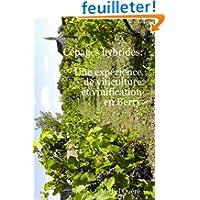 Cépages Hybrides: Une Expérience De Viticulture Et Vinification En Berry
