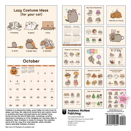 Nice Pusheen The Cat 2015 Wall Calendar