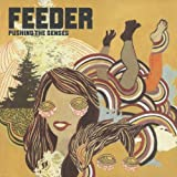 FEEDER-PUSHING THE SENSES