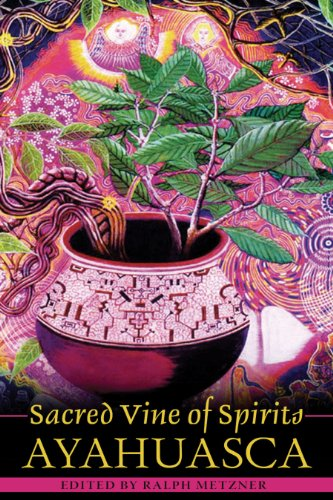 Sacred Vine of Spirits: Ayahuasca