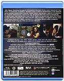 Image de I segreti di Brokeback Mountain [Blu-ray] [Import italien]