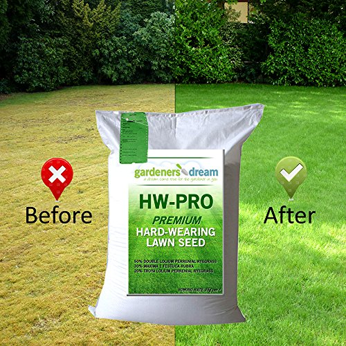 GARDENERS-DREAM-HARD-WEARING-SHADY-FINE-LAWN-GRASS-SEED