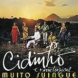 MUITO SUINGUE ムイトスインギ