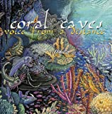 Voice From A Distance by CORAL CAVES