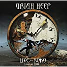 Live At Koko (LTD. Triple-Gatefold / Gold Vinyl / 180 Gramm) [Vinyl LP] [VINYL]