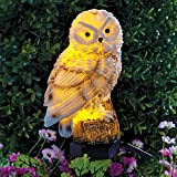 Bits and Pieces – Solar Powered LED Lighted Owl Stake – Garden Décor – Illuminate Any Plant, Bush, or Landscape