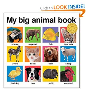 My Big Animal Book (casebound) (My Big Board Books)